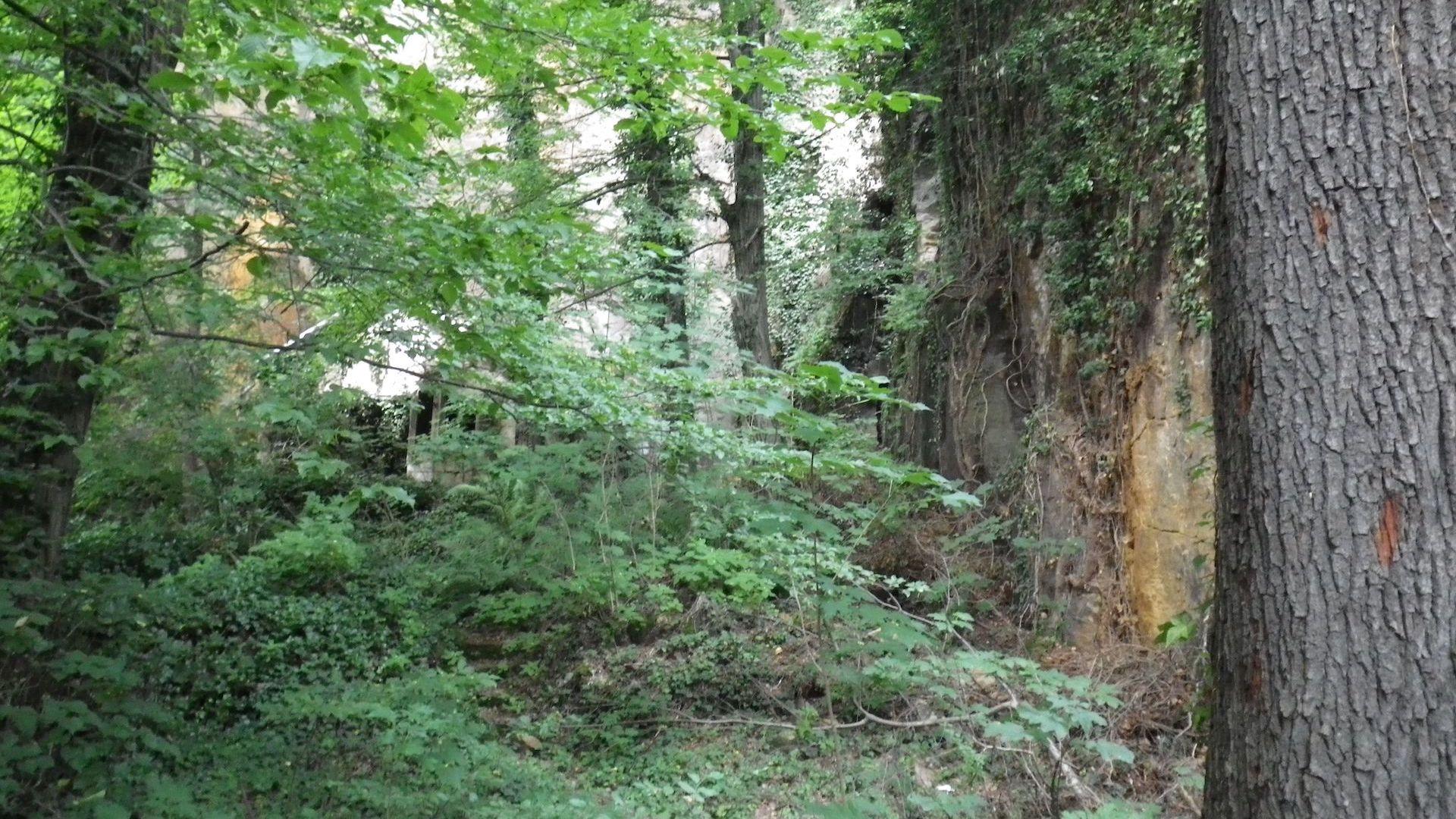 Der Klettergarten in Liebethal im Ursprungzustand